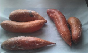 Sweet potatoes rubbed down with a bit of butter and sprinkled with salt.