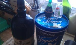 Ingredients (from left): Irish cream, green food colouring, mint extract, and frozen vanilla yogurt.